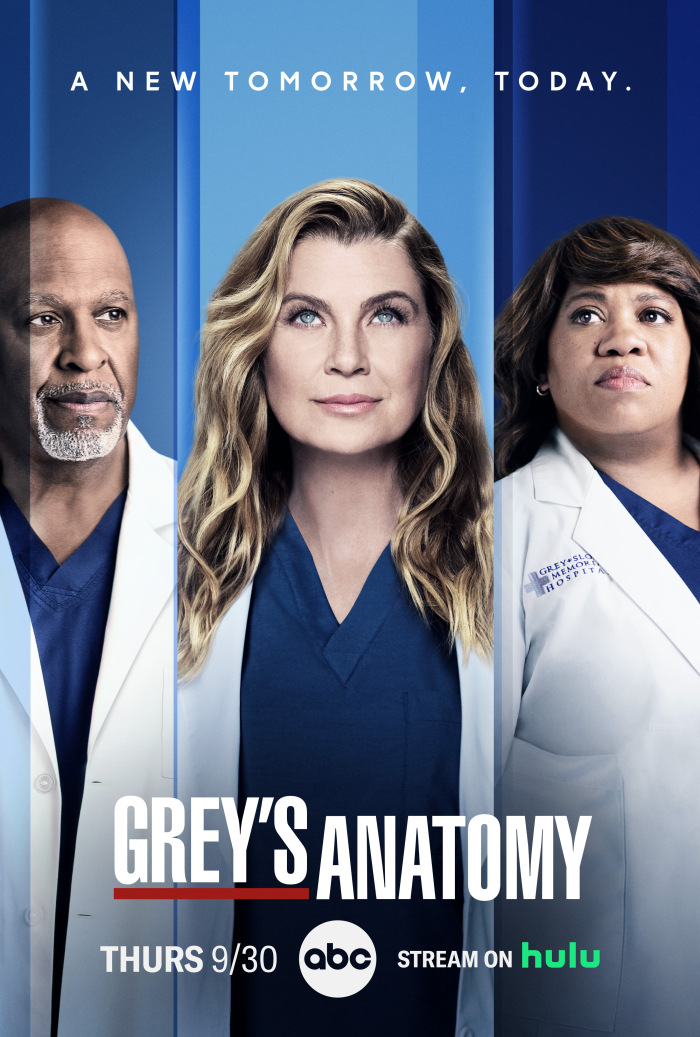 Greys Anatomy S14E16 XviD-AFG